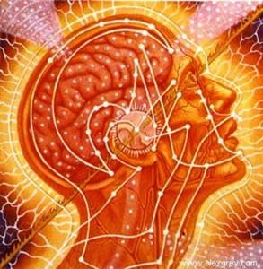 Page5 clip image002 0027 293x300 - Цикличность ума