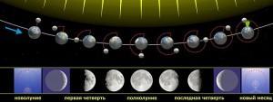 700px-Moon_phases_ru