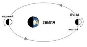 2439295 300x164 - Луна в апогее